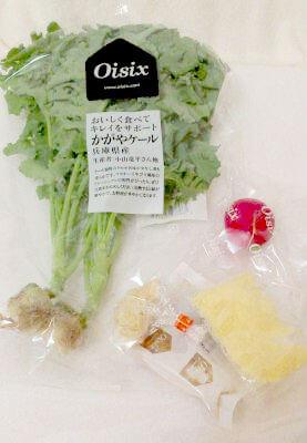 オイシックスの料理キット(ケールサラダ)の中身