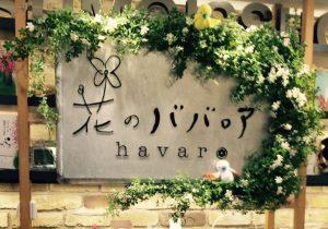havaro(ハバロ)のババロアの店舗