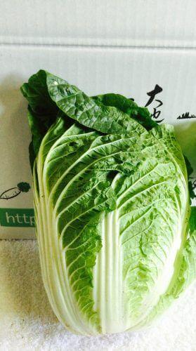 宅配食材のミレーのミニ白菜